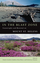 In the Blast Zone Cover