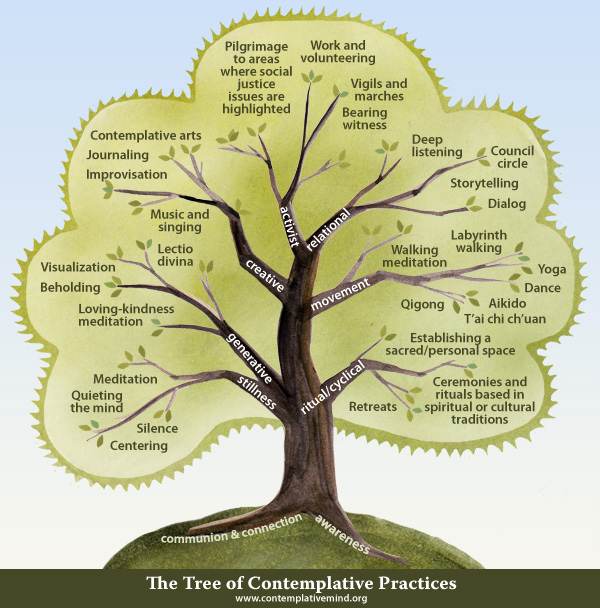 Contemplative Studies Tree