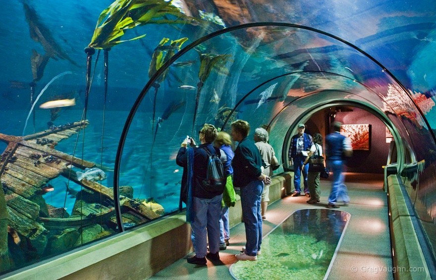 Tourist Attractions Between Toronto And Myrtle Beach
