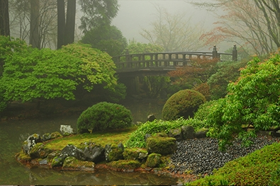 Places to see citizenship 2016 rethinking grand - Portland japanese garden admission ...
