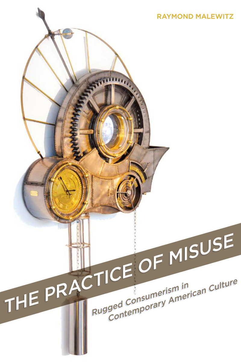 Book Cover - Practice of Misuse