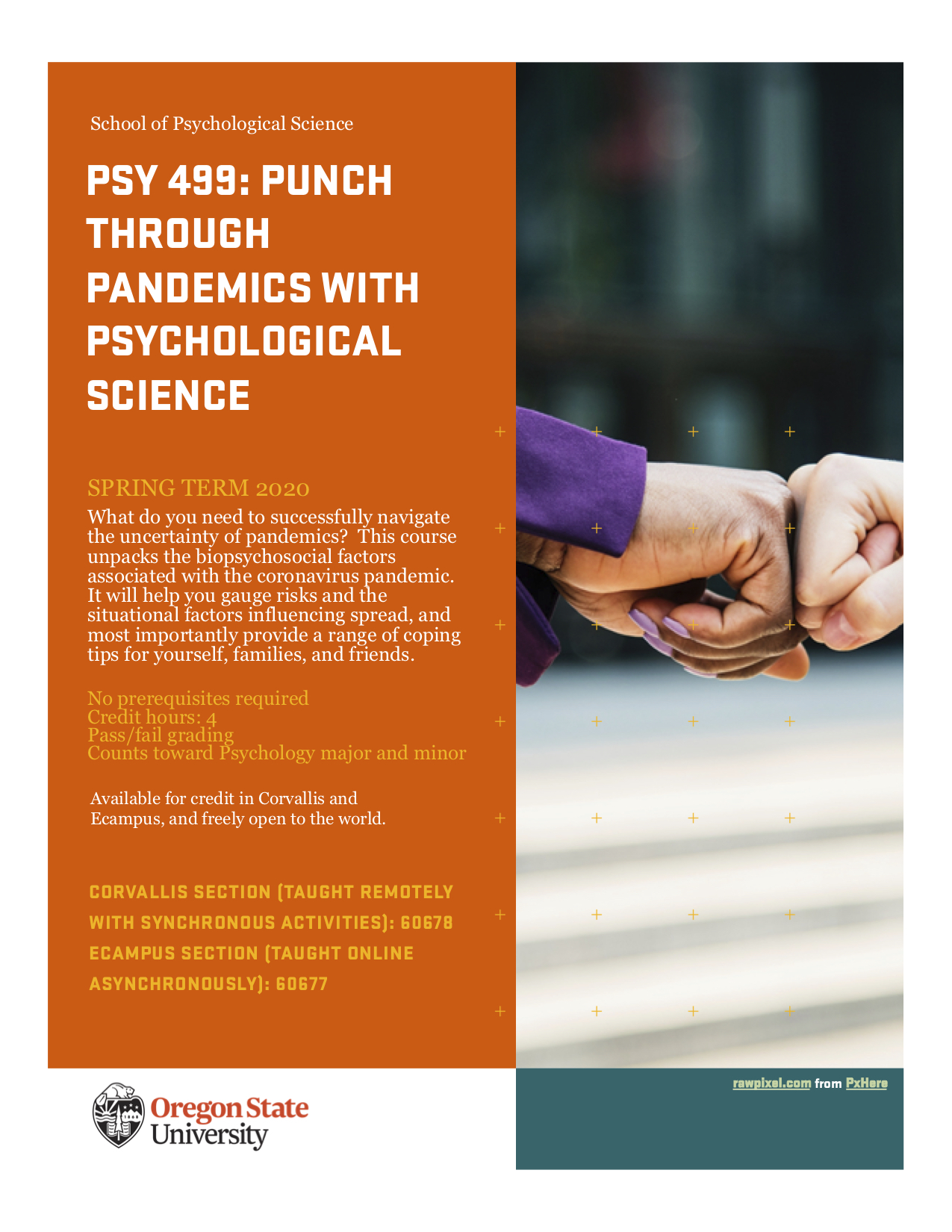 PSY 499 Punch Thru Pandemics Flyer
