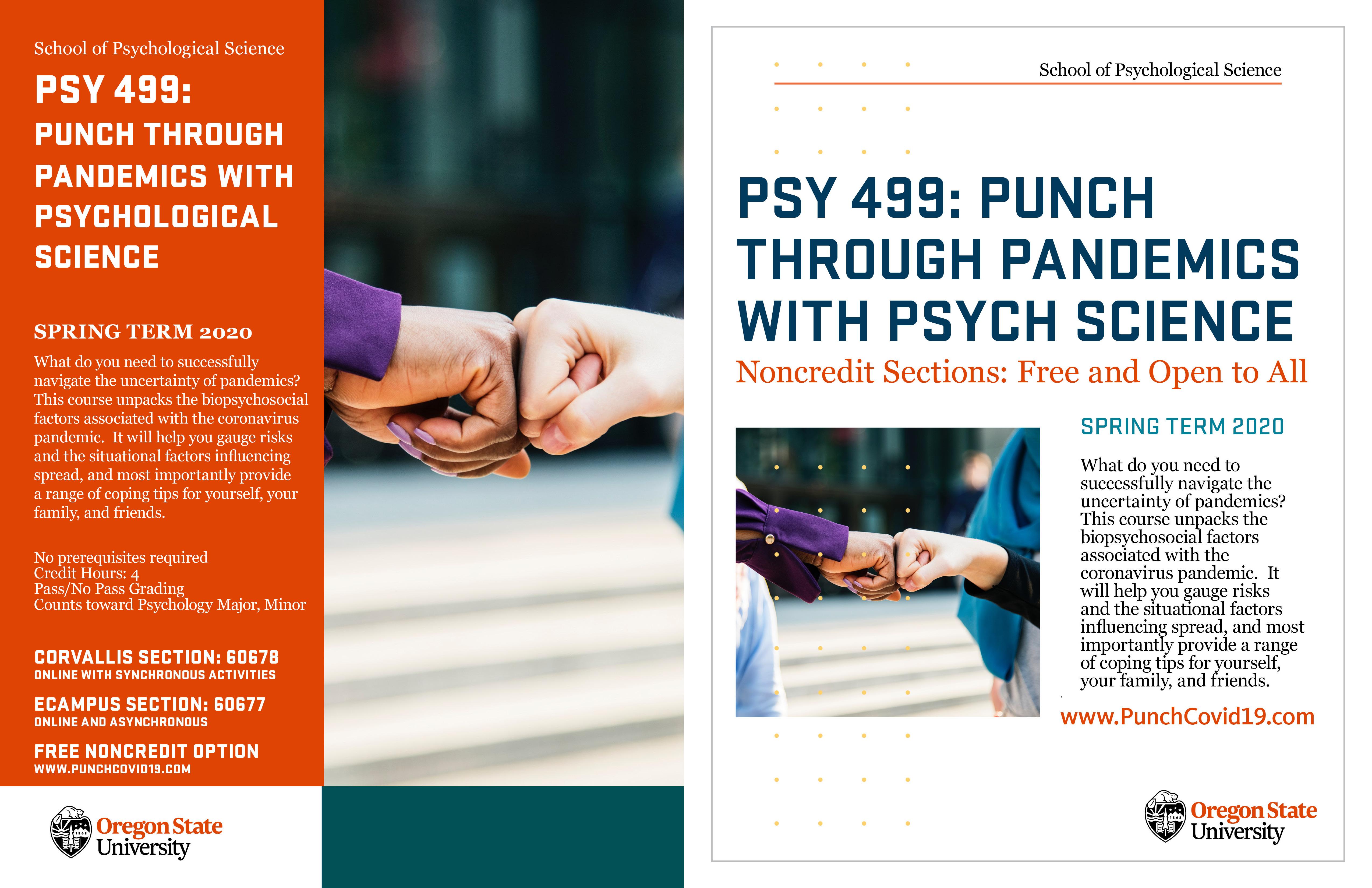 PSY 499 Punch Thru Pandemics Flyer