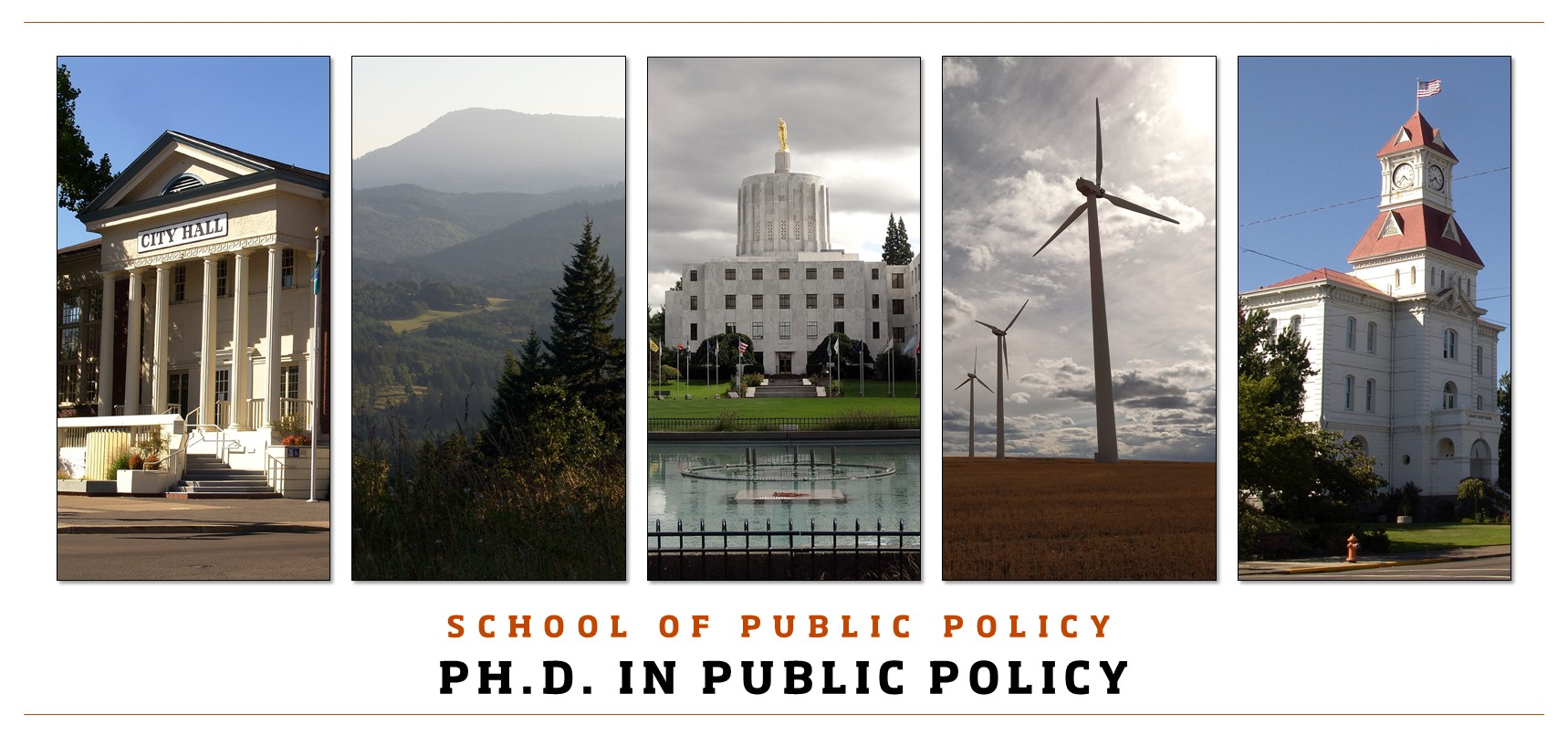 School of Public Policy PhD in Public Policy