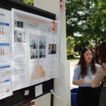 Undergraduate research project