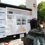 Undergraduate research presentation