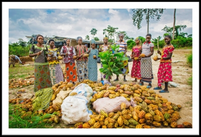 Women Farmers with crop on Ivory Coast