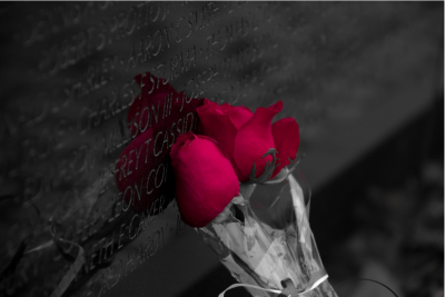 Pair of roses left on a monument wall