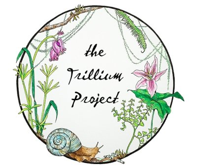 Trillium project illustrated logo